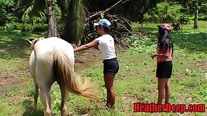 HEATHERDEEP.COM TEEN Girls vs Horse size chisel